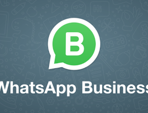 Video WhatsApp Business